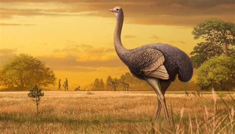 Ancient bird twice the size of the moa found in Crimea