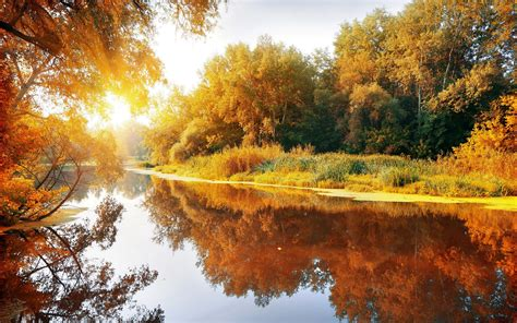 fall, Landscape, Trees, Water Wallpapers HD / Desktop and