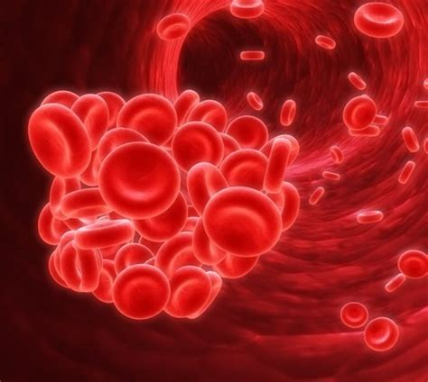 Know all about Pernicious Anemia - Health Watch Center