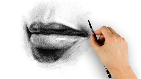 How to Draw Lips – Step by Step   Proko
